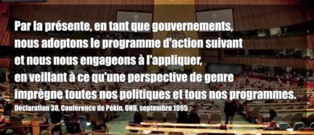 Théorie du genre à l'ONU 1995